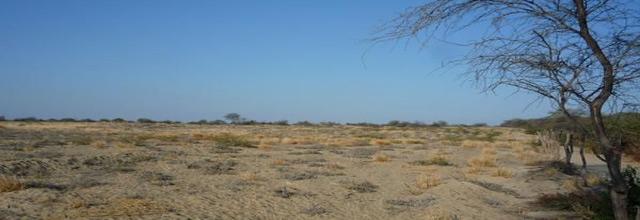 ProInversión subastará terrenos en Piura y La Libertad en abril y mayo